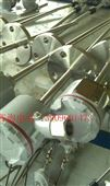 天康S型铂铑热防水铠装热电偶