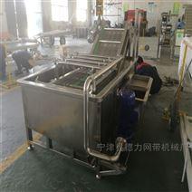 供应果蔬清洗输送机食品厂专用网带流水线