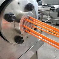 TSE75可食用大米吸管生产线