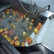 多功能清洗机 全自动洗菜机 果蔬气泡清洗