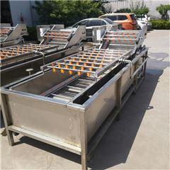 SDN-600豆角专用清洗机
