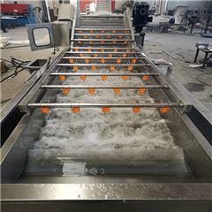 SDN-600新型山野菜清洗机
