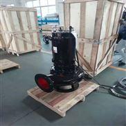 扬州大口径铸铁潜水泵厂家直销质量保障