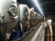 酒店專用德國原漿啤酒設備價格,小型自釀啤酒設備