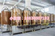 自釀啤酒設備就選鄭州大帝科技