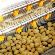 莲藕、山芋、土豆专用毛辊清洗去皮机