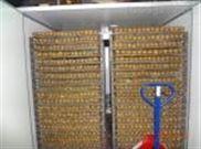 高温空气能罗汉果脱水烘干设备