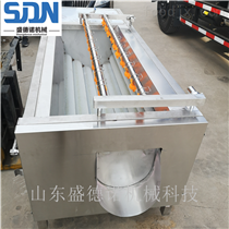 SDN-800胡萝卜净菜加工设备