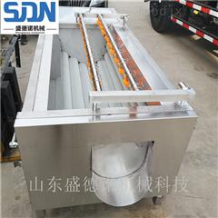 SDN-800大型速冻薯条薯片加工设备