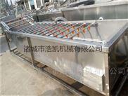 廠家定制果蔬氣泡清洗機洗菜機工業高壓清洗