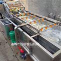 直销紫菜清洗专用高压喷淋气泡清洗机