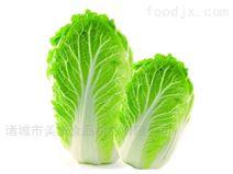 美康蔬菜清洗机-气泡清洗设备