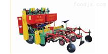 2CMMF-2A型馬鈴薯種植機