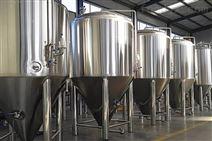 500L啤酒精酿设备