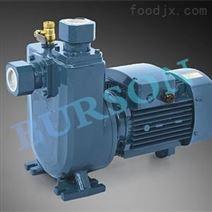 进口不锈钢排污泵(欧美进口十大品牌)BURSON
