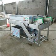 西红柿加工清洗流水线设备-果蔬清洗设备