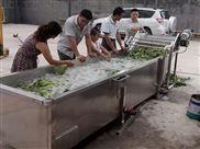 超聲波清洗機全自動根莖蔬菜清洗設備