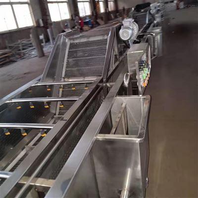 型号800供应新品涡流气泡多功能蔬菜清洗机 厂家