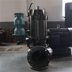 WQASWQAS切割排污泵设计方案图