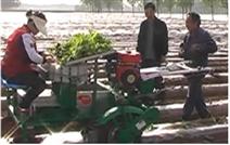 甘蔗移栽機器