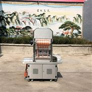 豆制品多功能气调包装机