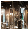 200L精釀啤酒生產設備
