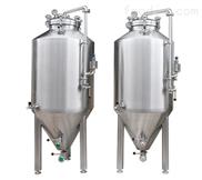 200-300L不锈钢精酿啤酒发酵罐