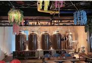 日产200L啤酒设备