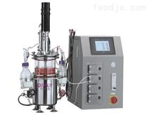 機械攪拌玻璃發酵罐