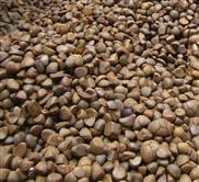 湖北油茶籽空气能烘干设备厂家