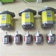 VIVOIL齿轮泵XV1P/0.9-25.4D