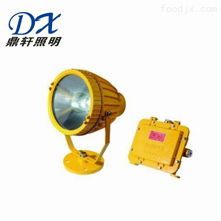 BR9700座式防爆投光灯150W金卤灯