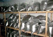 500立方-18℃茶葉冷庫的造價大概是多少?