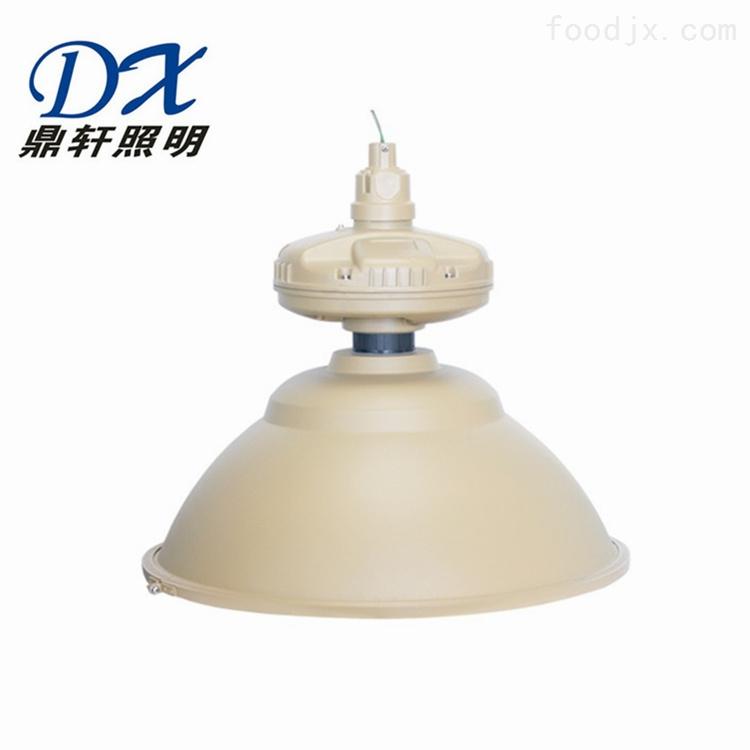 FHWJ600D/C石油化工三防无极灯