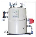 立式燃气油蒸汽锅炉