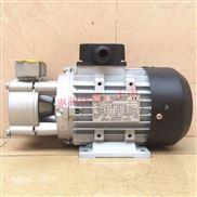 台湾元欣热水泵模温机泵1HP/0.75kw