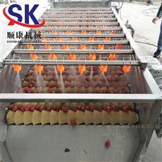 3000型牡蛎清洗机