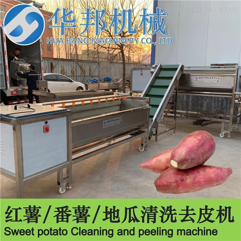 根茎类蔬菜毛刷清洗机 洗红薯机器流水线