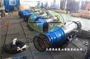 轴道式轴流泵_雪橇型潜水泵_厂家直销
