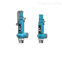 阀门Niezgodka safety valve 62型