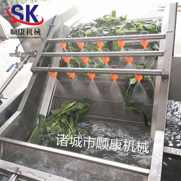 山野菜气泡清洗机