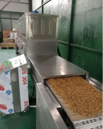 河南郑州微波木皮烘干机