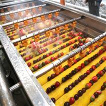 草莓清洗設備水果清洗機