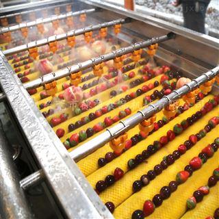 DY-2500草莓清洗设备