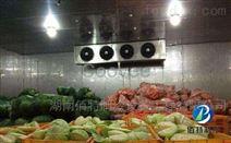 500平生鮮配送冷庫建造