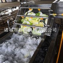 旺源红枣气泡式清洗机、清洗流水线成套设备