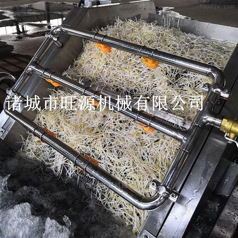 廠家直供多功能豆角噴淋式清洗機