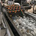 果蔬氣泡清洗機械