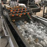 果蔬气泡清洗机械