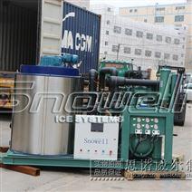 思諾威爾制冰機10噸片冰機